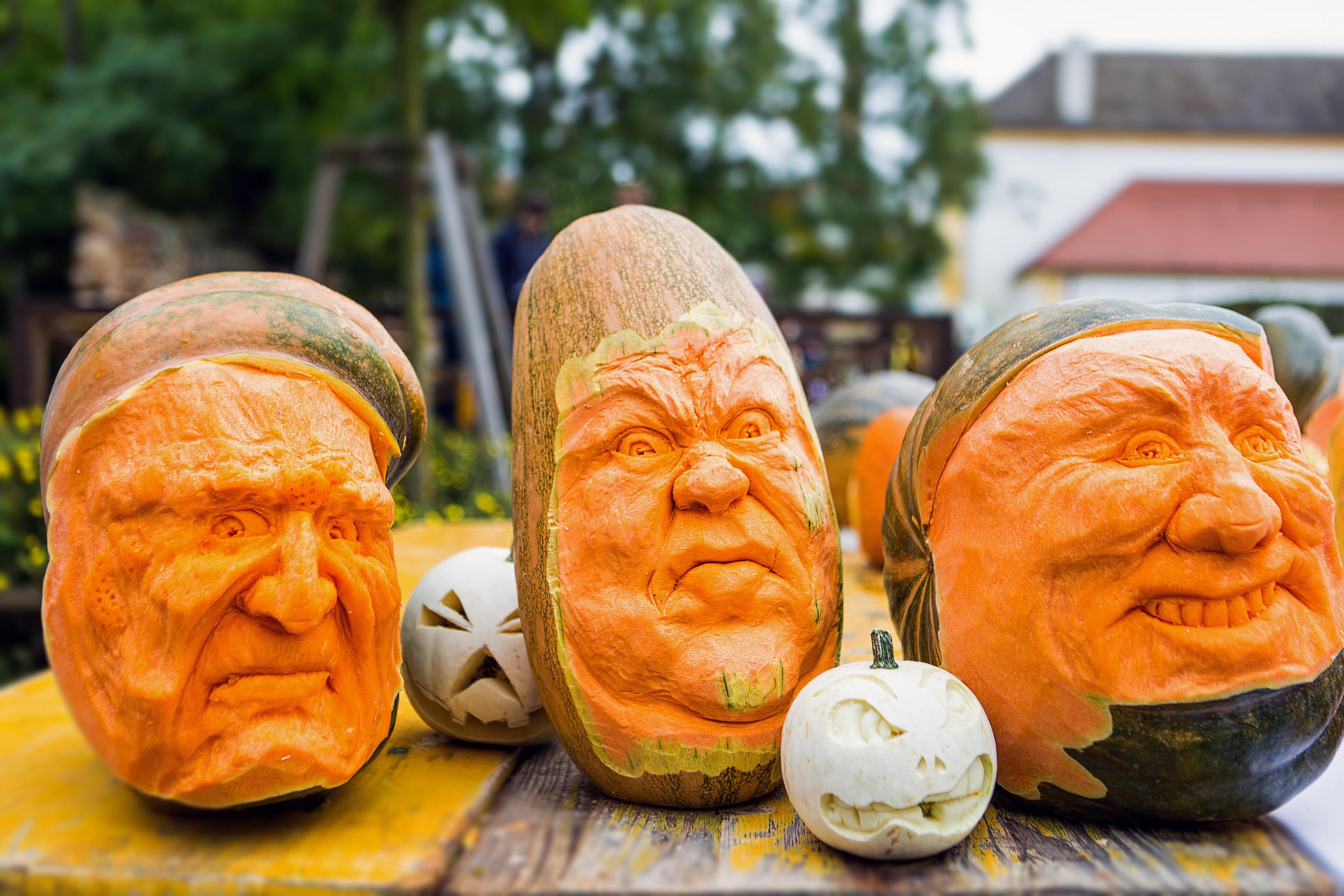 Jeseň na zámku Schloss Hof v znamení pestrosti - 9. a 10. októbra od 10:00 do 18:00
