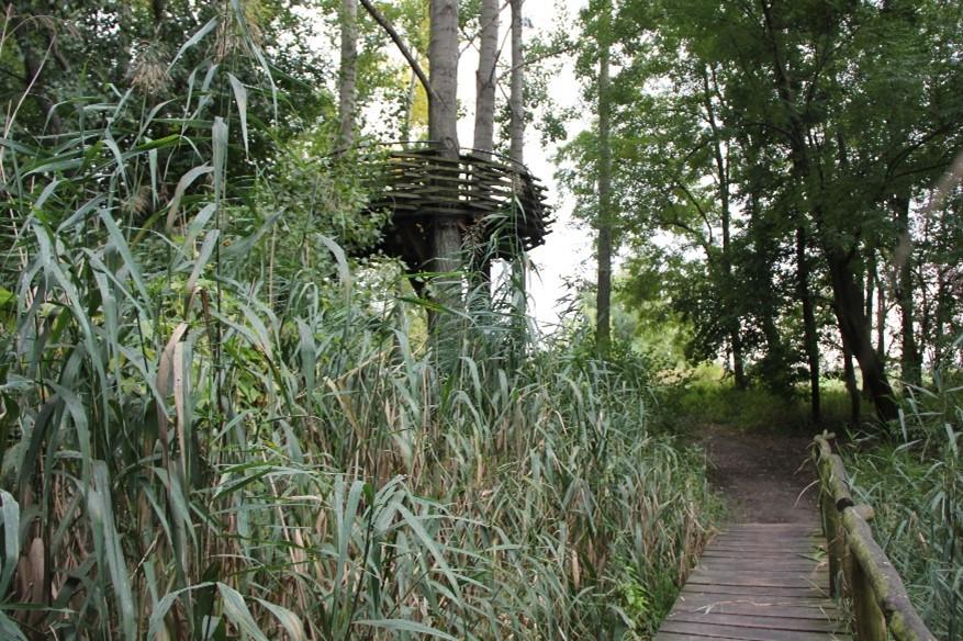 5. Výlet na rozhľadňu v Malinove a Bobrí hrad